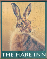 Photo of Hare